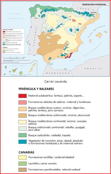 Mapa de la vegetación potencial en España.
