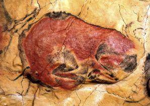 Bisonte herido. Cueva de Altamira (Cantabria)