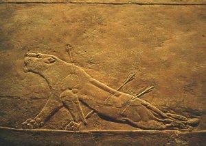Leona herida del palacio de Asurbanipal en Nínive
