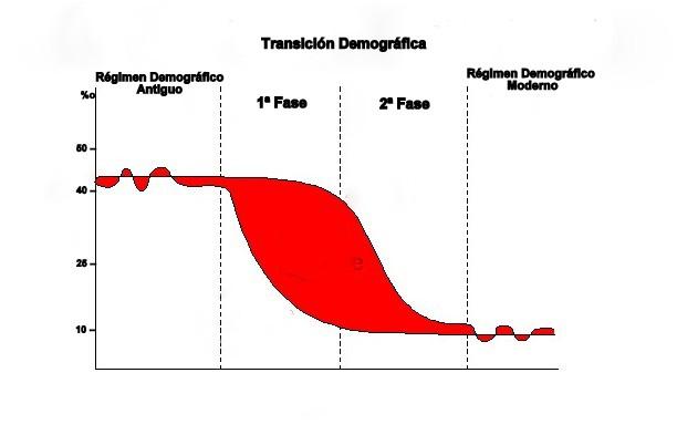 Gráfico Transición Demográfica