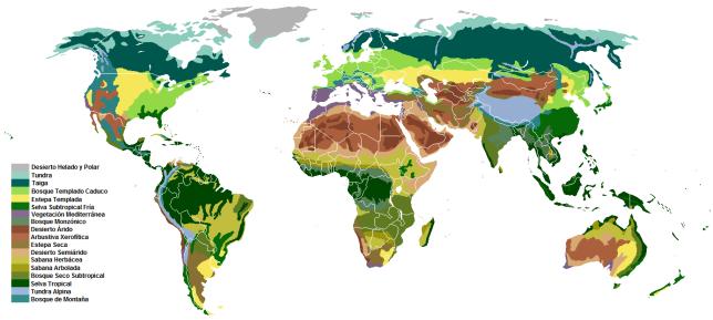 Biomas vegetación
